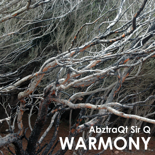 Warmony - AbztraQt Sir Q